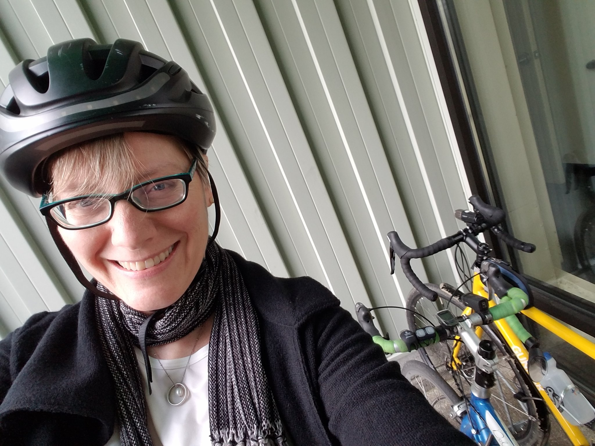 Errands by Bike Are a Breeze (and Sometimes Breezy): Errandonnee 2018